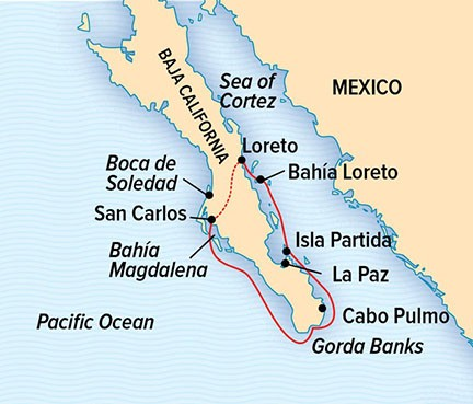 Baja California: Among the Great Whales Route Map