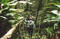 Hiking through the jungle